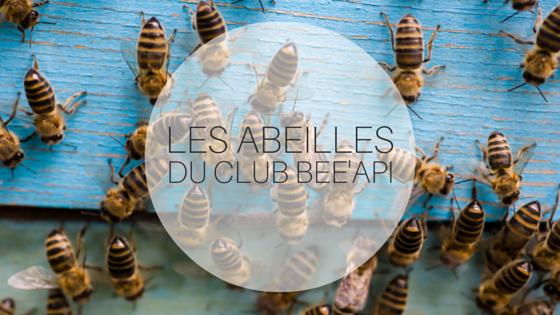 Des abeilles emménagent à Aiserey !